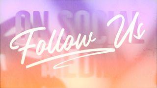Passion Fruit : Follow Us